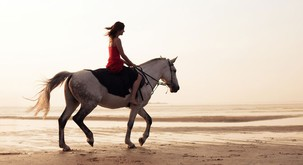 Terapija s konjem
