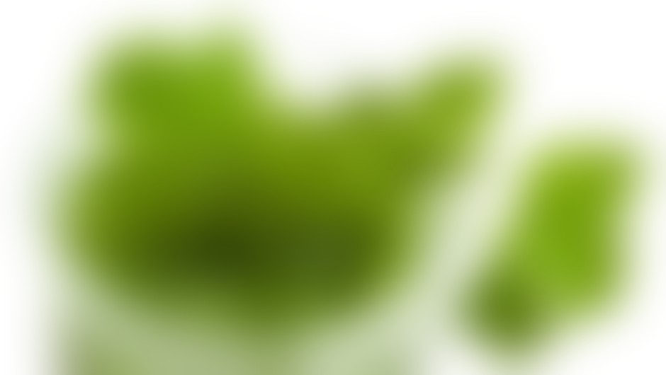 1 green smothie na dan!