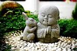kitajski-horoskop-leto-zajca-2011