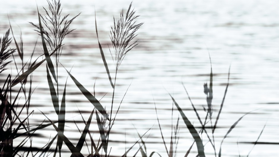 Do Jaza preko Ne-Jaza (foto: Shutterstock)