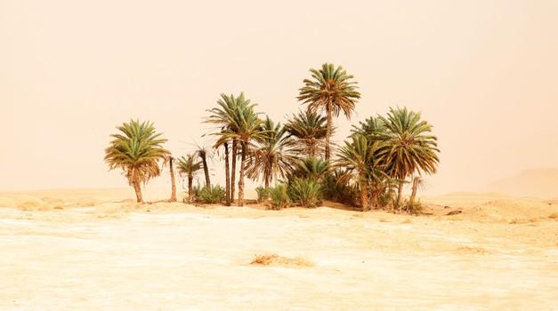 Libijski del Sahare (foto: Davor Rostuhar)