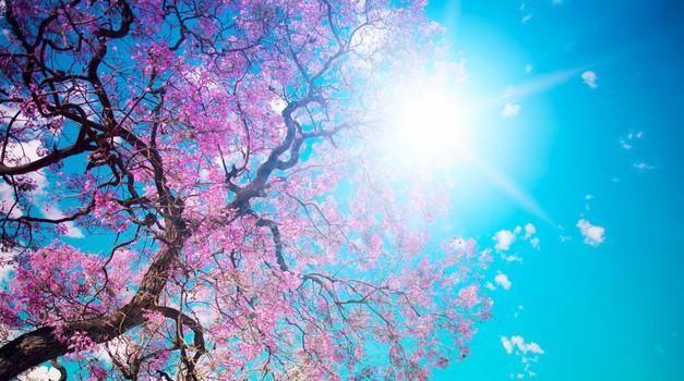 Sporočilo za današnji dan: Sprejemanje vam daje moč (foto: Shutterstock)
