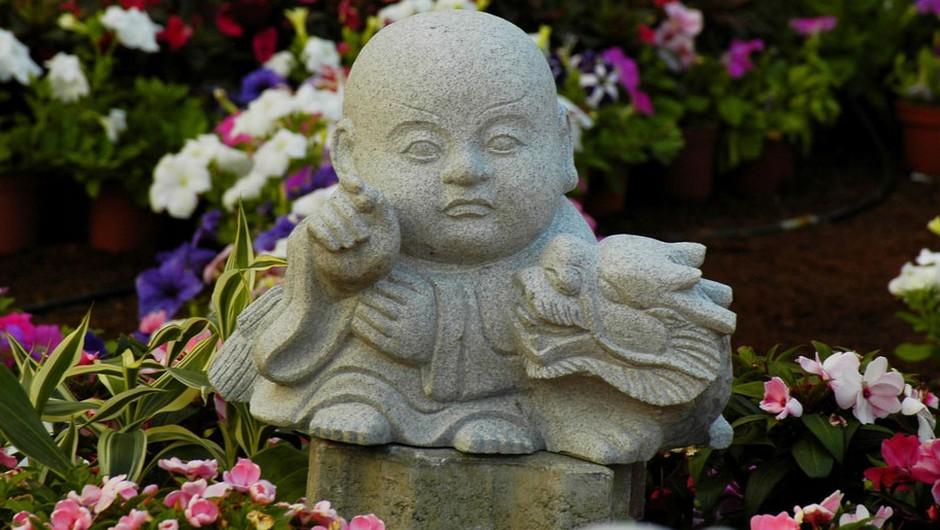 Kitajski horoskop za april 2012 (foto: Shutterstock)