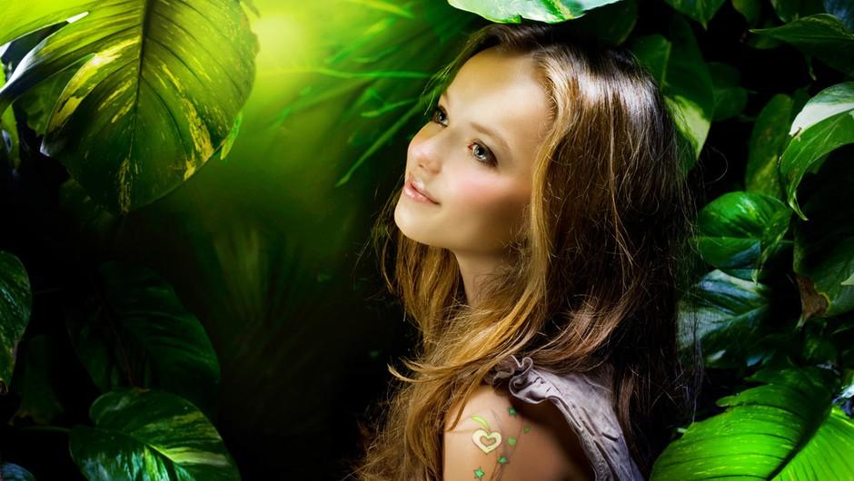 Stella in drevo modrosti (foto: Shutterstock)