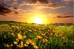 sonce-vzhod