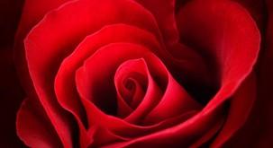Predavanje o poti srca in ljubezni (Točka Bindu)
