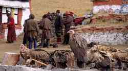 Tibetanska smrt