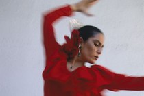 flamenco-plesalka
