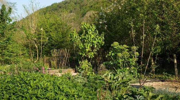 Permakulturni vrt sodeluje z naravnimi silami in se jim ne poskuša zoperstaviti.  (foto: Profimedia)