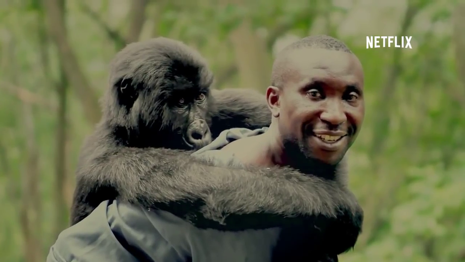 Virunga - dokumentarni film, ki vam bo segel do srca (foto: Youtube)