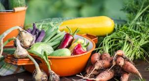 Aura kuhane in surove hrane