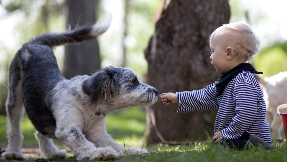 VIDEO: Živali in otroci (foto: Profimedia)