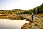 zenska-osamljenost-samota-narava-jezero