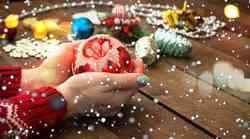 5. dan novoletnega izziva: Danes se bomo zaljubili!