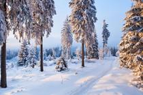 zima-zimska-idila-narava