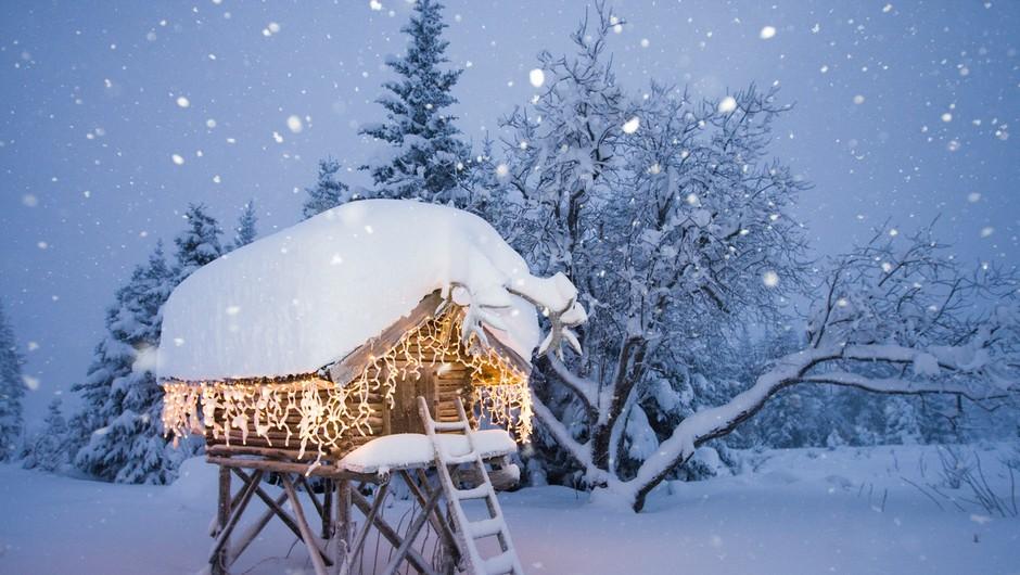 Vse snežinke so na enakem potovanju, a vsaka ima svojo pot (foto: profimedia)