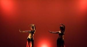 Hamsa, pet elementov orientalskega plesa