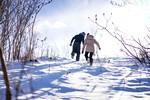 par-zima-sneg