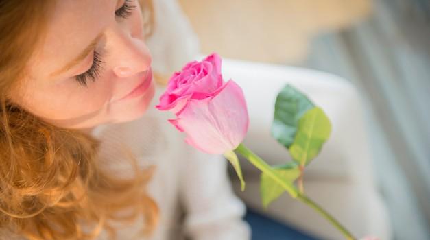 Katero barvo vrtnice podariti? (foto: profimedia)