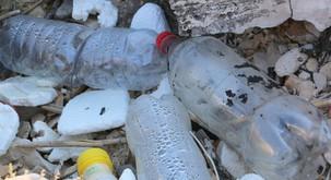 Foto in video: kako smo na velikonočni ponedeljek plažo na otočku pred Hvarom očistili plastike