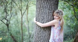 Katero drevo bi morali večkrat objeti