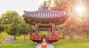 Kitajski horoskop od 13. do 18. 6. 2017