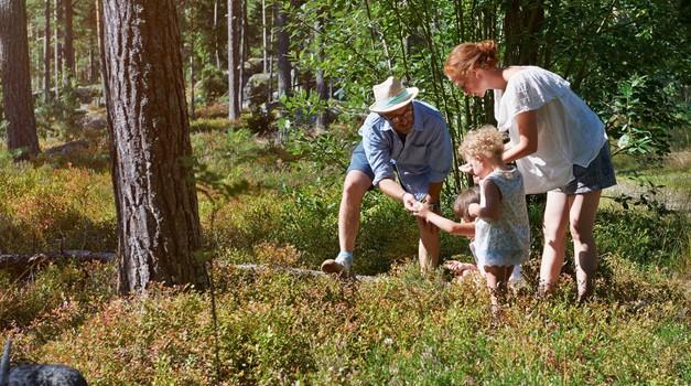Umetnost vzgoje odgovornih, samostojnih in zdravih otrok (foto: profimedia)