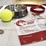 Good4Dogs je prva slovenska surova hrana za pse. Vsebuje vse potrebno za normalno rast in zdrav razvoj vašega psa. (foto: Igor Zaplatil)
