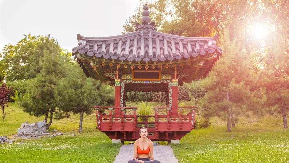 Kitajski horoskop od 10. do 15. 10. 2017 (foto: profimedia)
