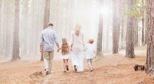 Inventura družinskih in kolektivnih vzorcev