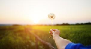 Pomembno je, da vsak človek začuti potrebo po spreminjanju sebe