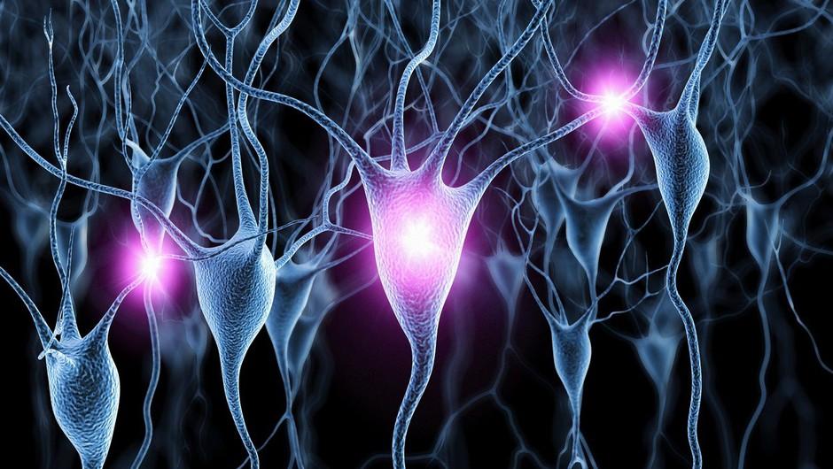 Čiščenje travm iz celičnega spomina (foto: profimedia)