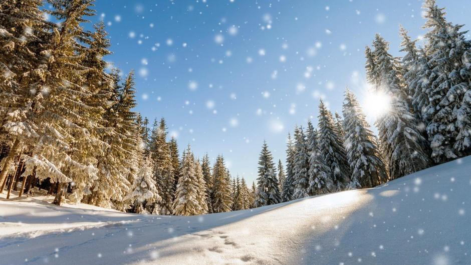 Kaj so počeli naši slovenski predniki ob zimskem solsticiju? (foto: profimedia)