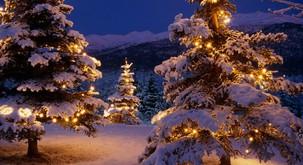 Sporočilo božiča: Prihaja svetloba, življenje, optimizem in napredek