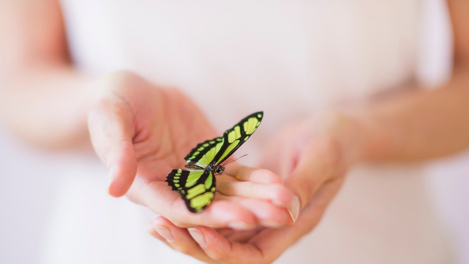 Čudeži se dogajajo, če verjamete v njih (foto: profimedia)