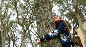 Zdravljenje z energijami dreves