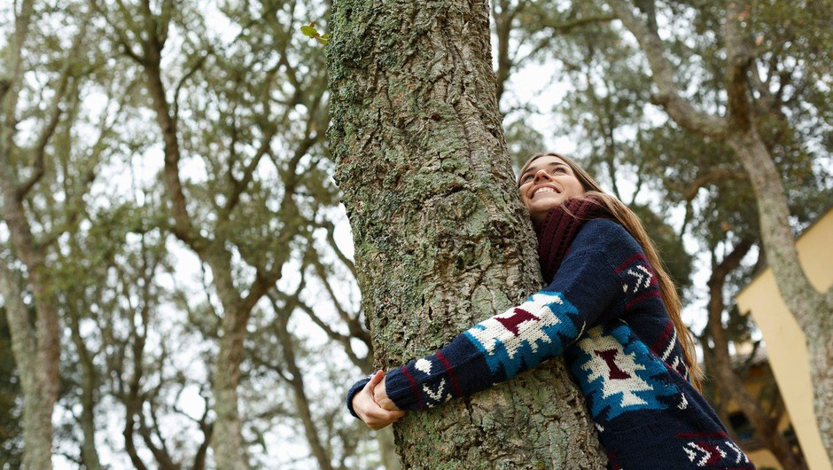 Zdravljenje z energijami dreves (foto: profimedia)