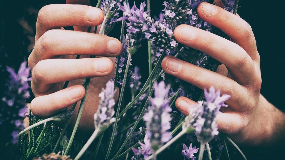 10 drobnih pozornosti, ki polepšajo dan (foto: unsplash)