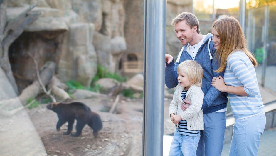 Zakaj otrok NE vodimo v živalski vrt (foto: profimedia)
