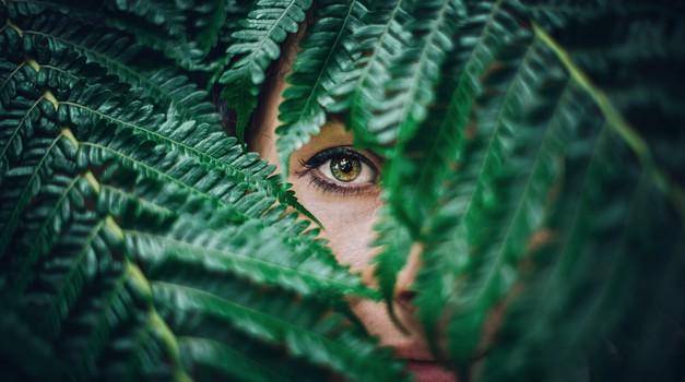 Karma vse vidi in vse ve ter ničesar ne pozabi (foto: unsplash)