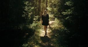 V gozdovih lahko okrepimo vez z našo dušo