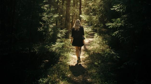 V gozdovih lahko okrepimo vez z našo dušo (foto: unsplash)