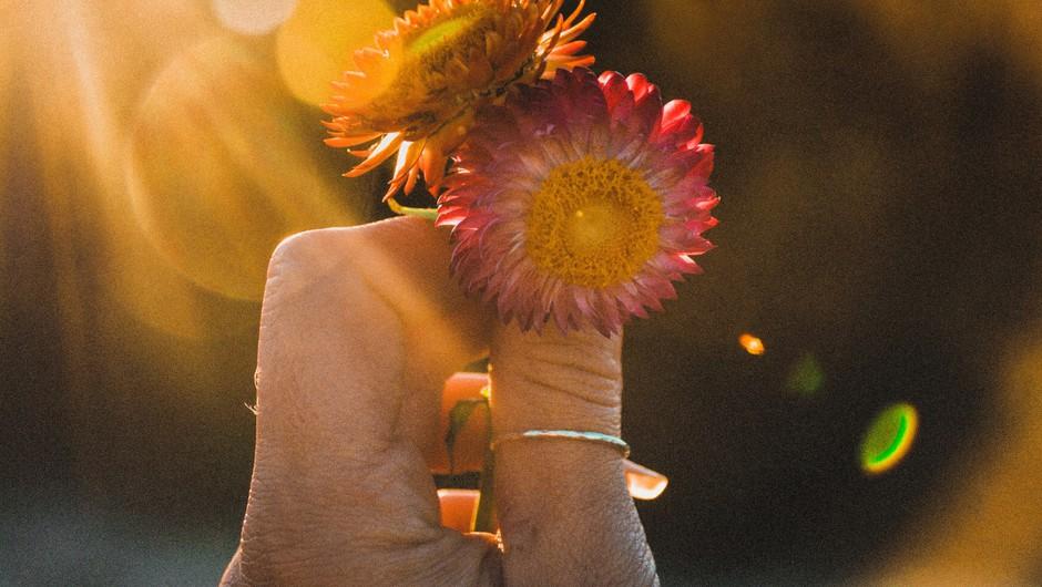 Paulo Coelho: 23 pomembnih misli za življenje (foto: unsplash)
