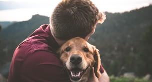 5 duhovnih lekcij, ki se jih lahko naučite od svojega psa