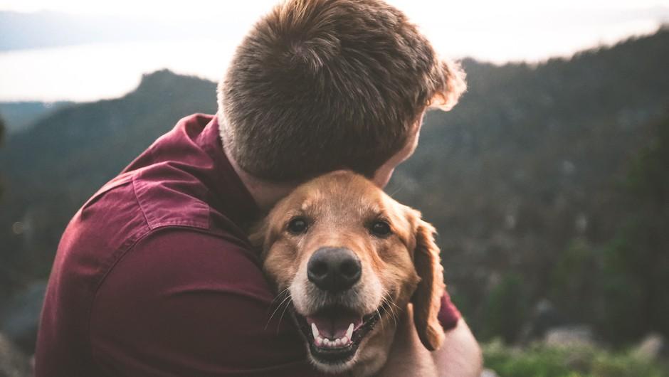 5 duhovnih lekcij, ki se jih lahko naučite od svojega psa (foto: unsplash)