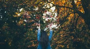 15 razlogov, da se veselimo jeseni