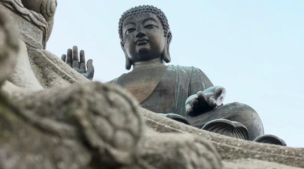 Nekoč je Budo obiskalo nebeško bitje in mu zastavilo nekaj vprašanj (foto: unsplash)