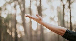 Sporočilo za današnji dan: Občudujte dar življenja