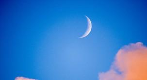 Sreda (7. 11.) - Lunin mlaj zdravi bolečine