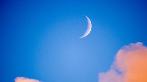 Sreda (7. 11.) - Lunin mlaj zdravi bolečine (foto: profimedia)